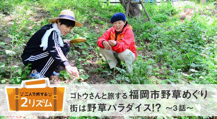 ゴトウさんと旅する福岡市野草めぐり 街は野草パラダイス!?[3話]