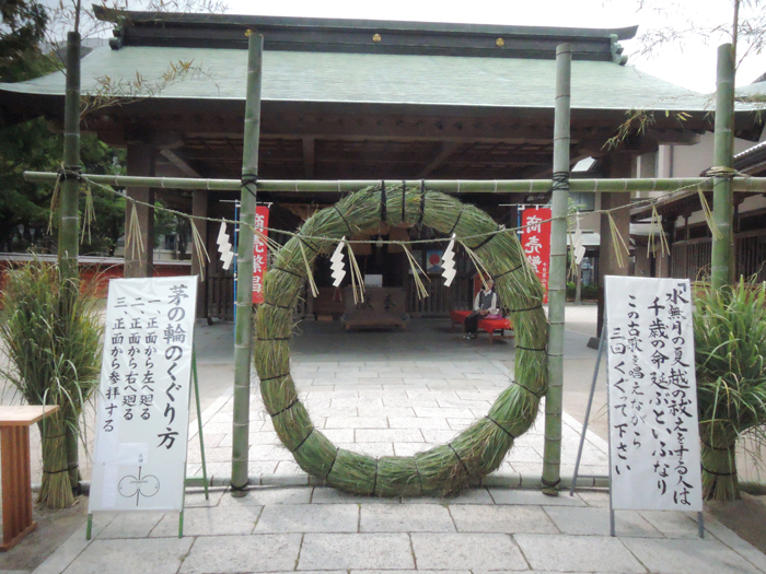 芽の輪でできた輪、意外と大きい。