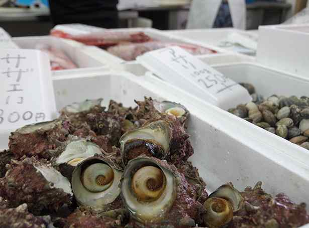 その日の朝水揚げされたばかりの新鮮な魚が、お手頃価格で並びます。