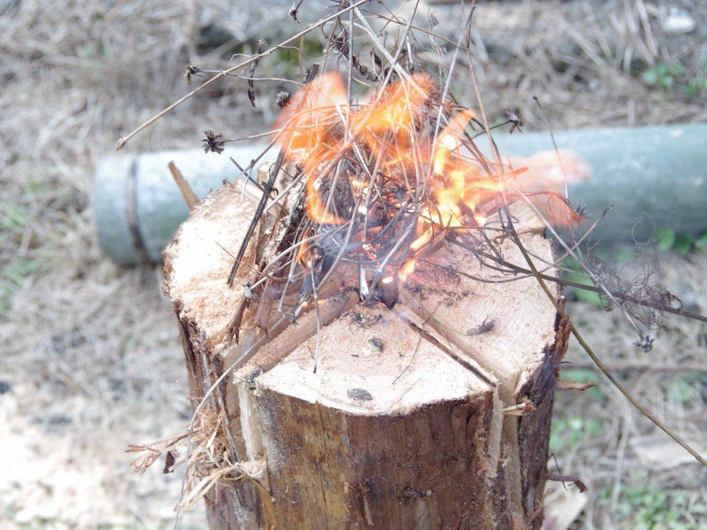 丸太に入れた切れ目に火種となるおがくずと枯れ草を入れて着火。
