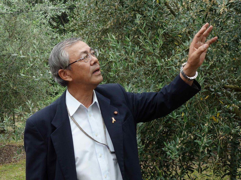 河田さんのオリーブの師匠、藤田農園の藤田さん。オリーブのことをいろいろと教えてくださいました。